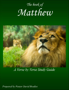 Matthew - A Verse by Verse Study Guide